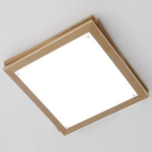[나무자전거]  [BB][LED] 북 방등-에쉬